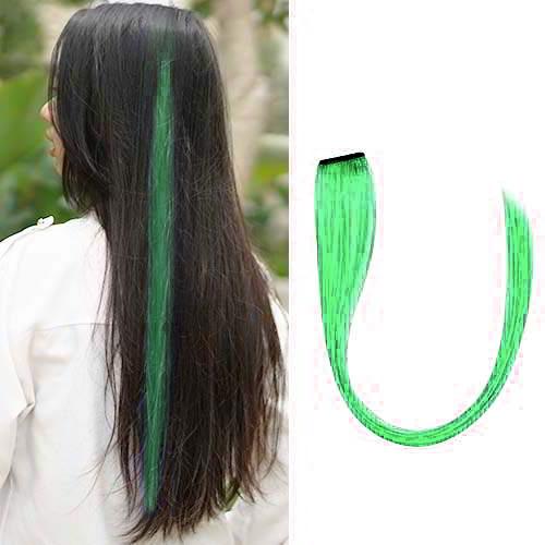 Wig Dan Hair Extension Strike Highlight Hair Clip J4U413