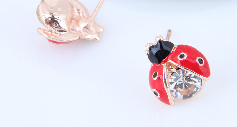 Anting Tusuk TAAF7A