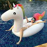 pure color horse swimwear accessories